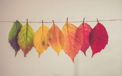 Pequeños cambios para crear un gran cambio de vida