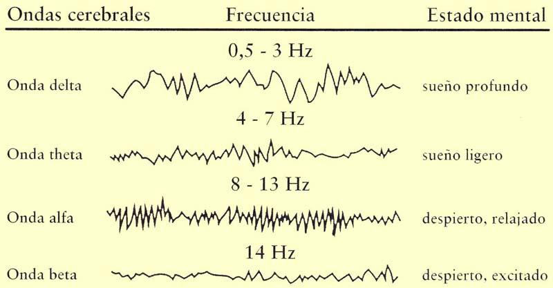 Reprogramar el subconsciente mediante las ondas alfa